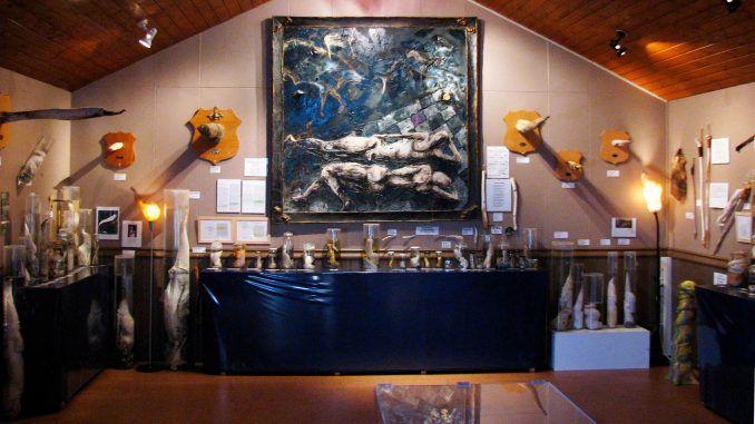 İzlanda Falloloji Müzesi, Reykjavík, İzlanda